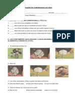 PRUEBA orejas de mariposa - copia (2).docx