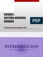 Tema 1 Neuroanatomia