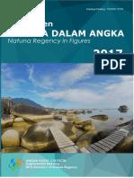 Kabupaten Natuna Dalam Angka 2017.pdf