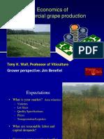 Economics of Commercial Grape Production