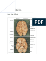 snell-clinical-neuroanatomy-7th-edition_41.pdf