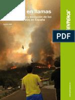 2009 El Futuro en Llamas - Greenpeace