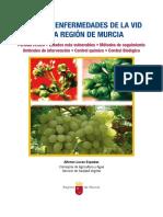 1197-Texto Completo 1 Plagas y enfermedades de la vid en la Región de Murcia.pdf