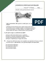 5º Básico DIGANOSTICO.doc