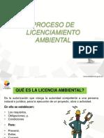 4. Proceso de Licenciamiento Ambiental