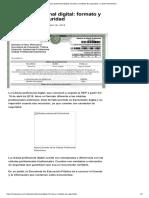 Cedula Profesional Digital_ Formato y Medidas de Seguridad - El Diario Neoleonés