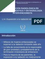 RPDIR L14 Pregnancy Es WEB