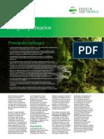 Bosques Primarios