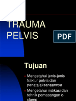 215431509 Trauma Pelvis Ppt