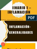 SEMINARIOINFLAMACIÓN.pptx