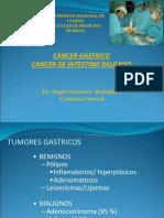 CA Gástrico e Intestino