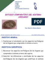 SISTEMA URINARIO-COMPARADA