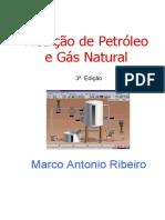 Livro Petrobras-Medição.pdf