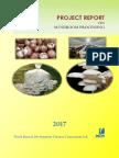 Mushroom Processing