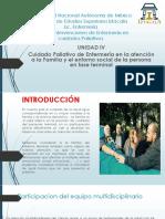paliativos (2)