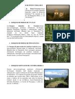 ECORREGIONES DE GUATEMALA.docx
