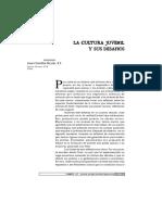 Cultura juvenil.pdf