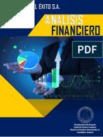 Analisis Financiero Peleteria El Exito s.a.