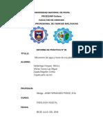 Informe- Movimiento Del Agua a Travez de Una Planta . Vilchez Correa Luis