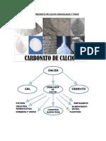 0 Perfil de Proyecto Caco3