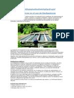 Beneficios en El Uso de Biodigestores Implmentar en El Problema