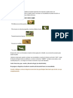 Nuevo Documento de Microsoft Office Word (8).docx