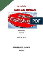 Karya Tulis Pergaulan Bebas 01.docx