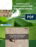 PROPAGACION DE TARA TACNA.pptx