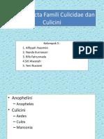 1) Culicidae Dan Culicini