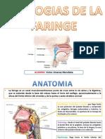 Patologias de Faringe