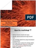 morfologibakterikapangdankhamir-170320062034