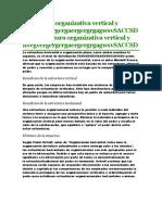 Estructura Organizativa Vertical y Horizontal Copia