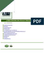 Biologia – Como funciona una celula. Fisiologia celular(1).pdf