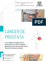 Salud Cancer de P Scrib