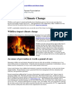 Impact of Forest Fires Summary