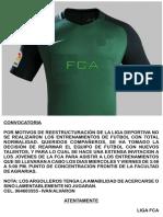 Camiseta Fca