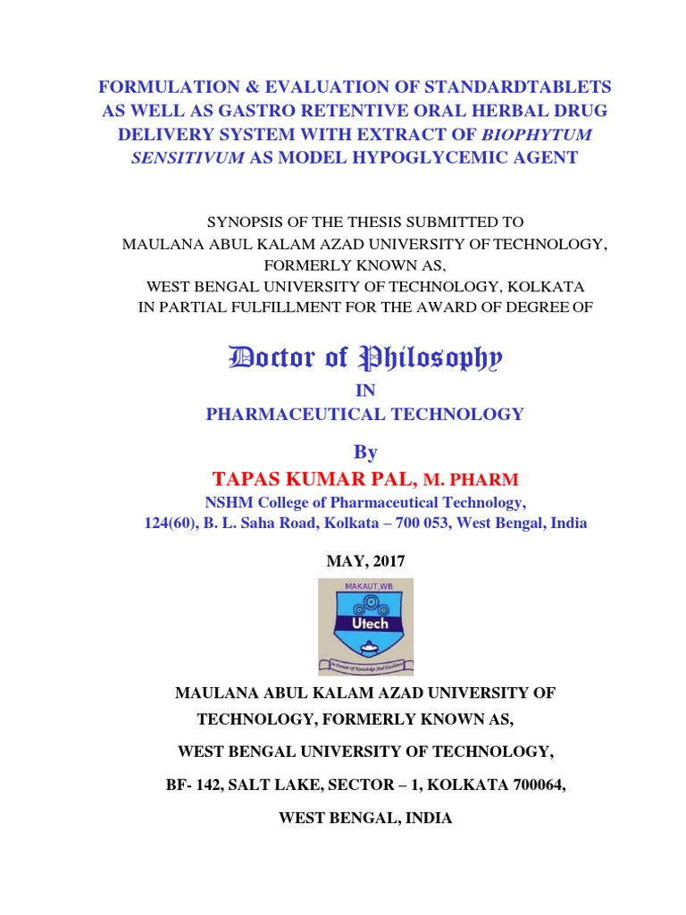 Synopsis thesis phd