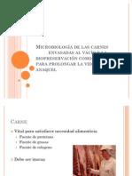 Microbiología de las carnes xpo!