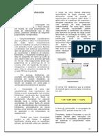 4_Fluidos.pdf