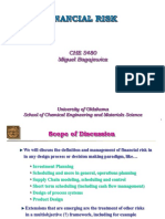 Financial Risk_presentation.ppt