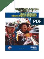[Cartilla] FT-Que Es La AIOC (2009)
