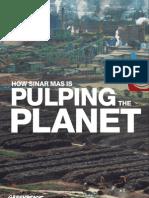 Sinar Mas Pulping the Planet