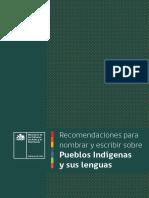 Guia Recomendaciones Pueblos Indigenas