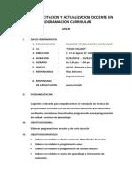 Plan de Capacitacion y Actualizacion Docente en Programacion Curricular