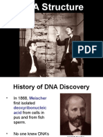 DNA Structure 0405.ppt