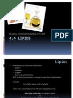 Biology Form 4 Lipids