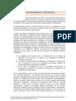 Analisis de Riesgos y Mitigacion San Isidro