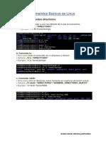 Comandos Básicos de Linux_Daniel Ortega Santivañez