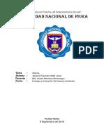 Informe N.-1.docx