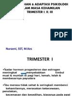 7. Perubahan&Adaptasi Psikologi Dlm Masa Kehamilan Trimester i,II,III